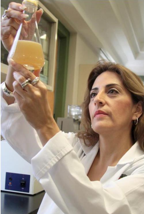 Dra. KATIUSKA