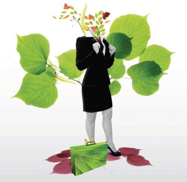 negocios ecoloógicos