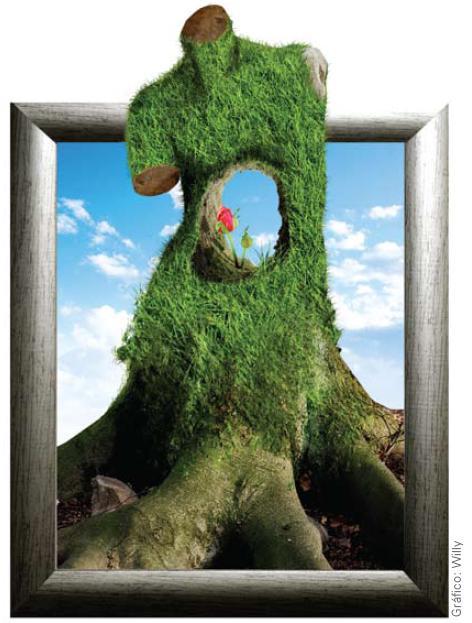 Protege Ley esculturas ecológicas