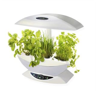 Tecnología de la NASA para tener un huerto en la cocina