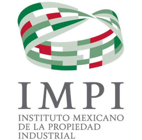 El IMPI y su dirigencia
