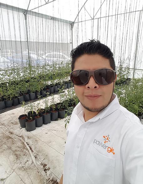 Innovadores mexicanos reducen costos de producción con equipos solares