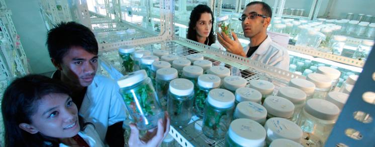 Sciencial, un sitio web de divulgación para la comunidad científica