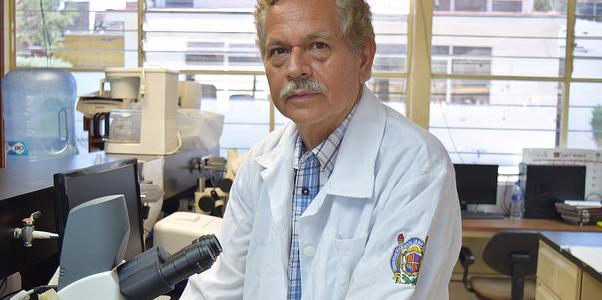 Desarrollan en universidad michoacana modelo para retrasar complicaciones por diabetes