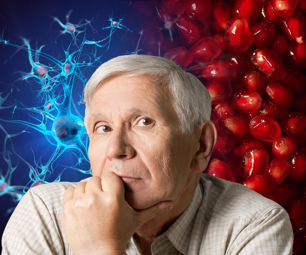 Mediante nanotecnología hacen llegar Omega 5 al cerebro y protegen neuronas ante procesos degenerativos