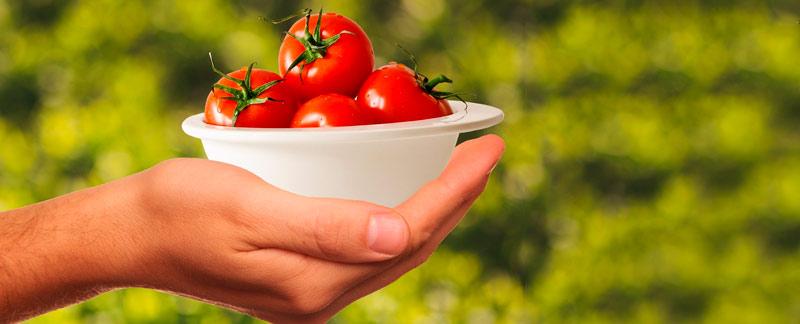 Lanzan convocatoria al Premio Nacional en Ciencia y Tecnología de Alimentos