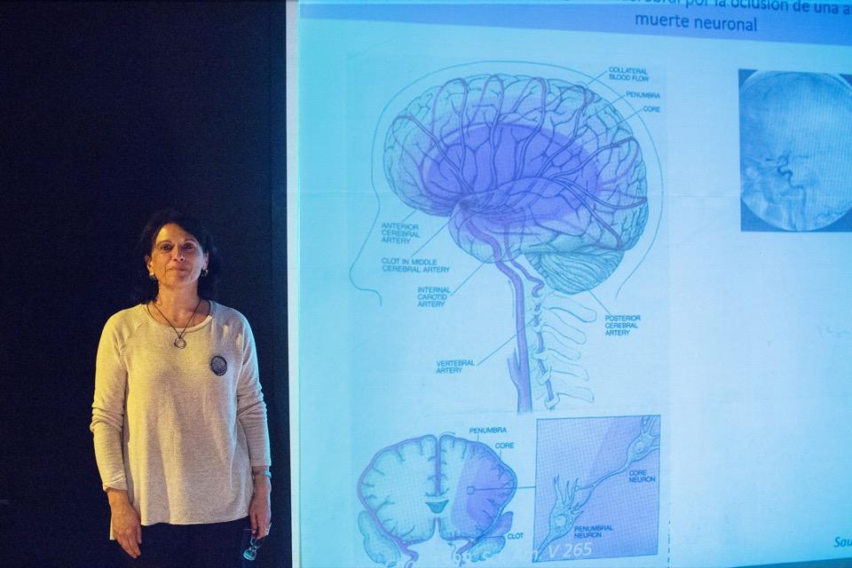 Buscan evitar daño en el cerebro por falta de glucosa