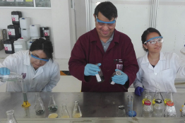 Biofiltro de cáscaras de naranja eliminará cromo de aguas residuales de León, Guanajuato