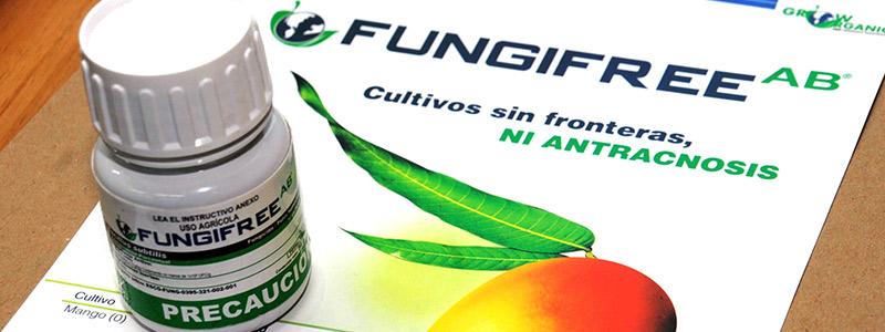 Oficialmente patentado el primer biofungicida hecho en la UNAM