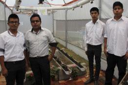 Trabajan Politécnicos en la Automatización de Invernaderos