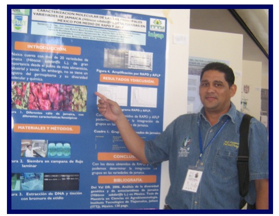 La Jamaica de México: un producto versátil para emprendedores altamente competitivos
