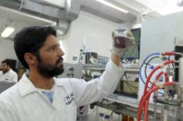 Universitarios producen biocombustibles gaseosos a partir de residuos de la industria vitivinícola