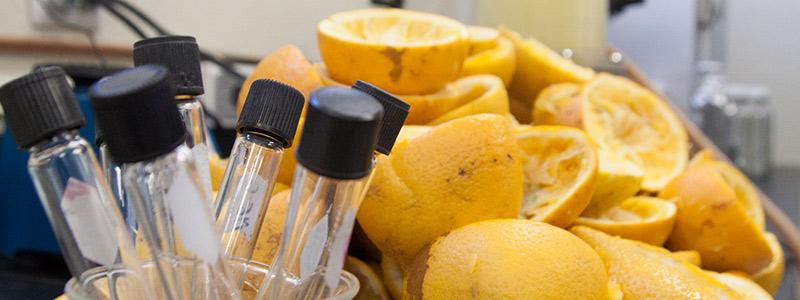 Científicos emprendedores le sacan jugo a la naranja
