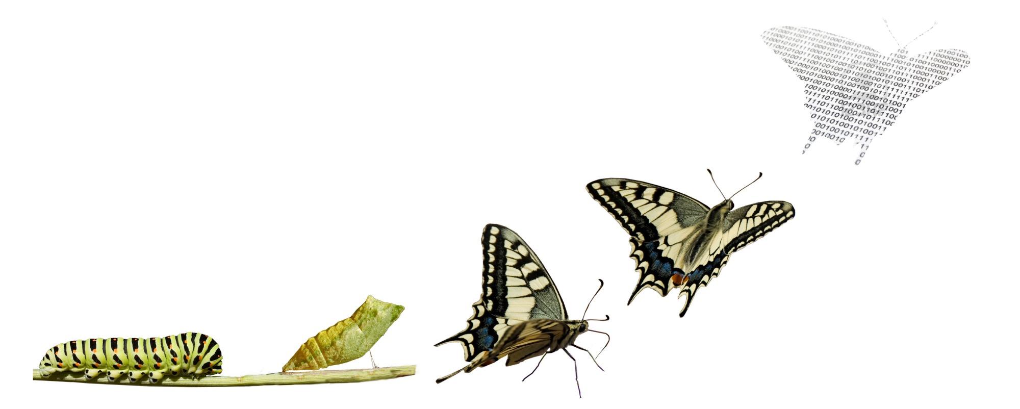La transformación del cambio tecnológico