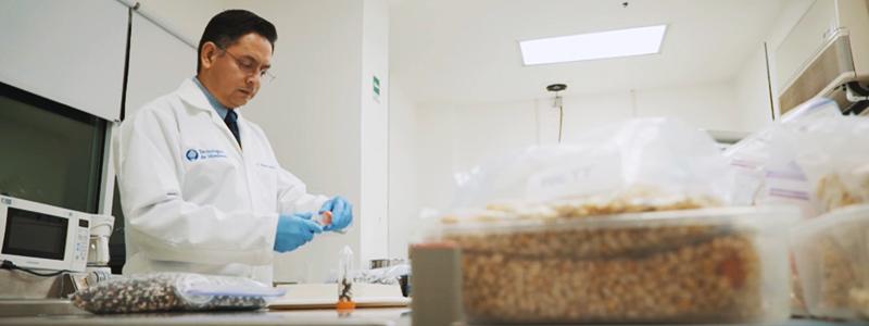 Biotecnología para la seguridad alimentaria