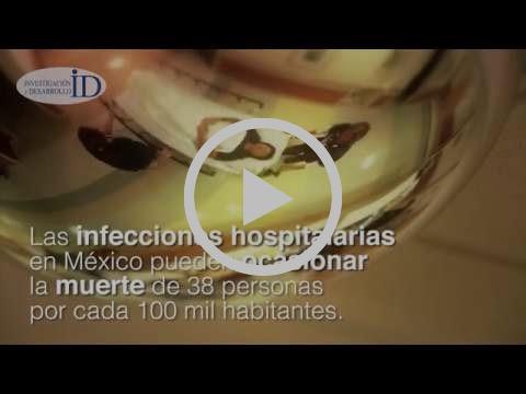 Crean investigadores mexicanos hilo y tela que mata bacterias