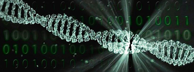 Bioinformática, la moderna brújula científica