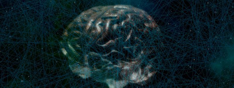 Redes neuronales, información y conocimiento