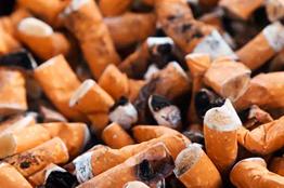 A partir de colillas de cigarro, universitario elabora celulosa para fabricar papel