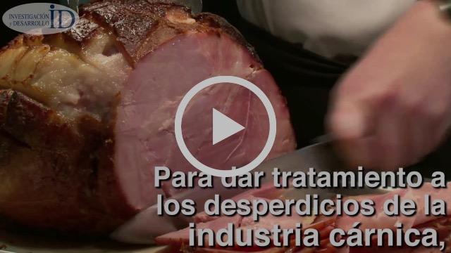 Con residuos de industria cárnica, empresa mexicana produce electricidad