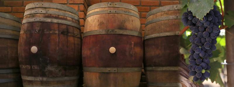 En busca de la identidad química del vino de Baja California