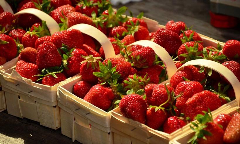 Edmundo Lozoya mejora y patenta capacidad antioxidante de las fresas