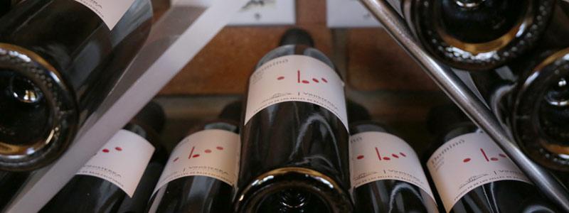 Construirán centro de estudios vitivinícolas en Baja California