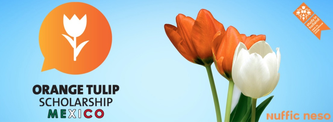 Orange Tulip Scholarship Mexico 2019-2020