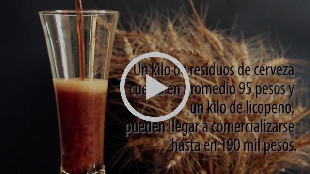 Residuos de la cerveza para prevenir enfermedades, como cáncer de próstata y colón