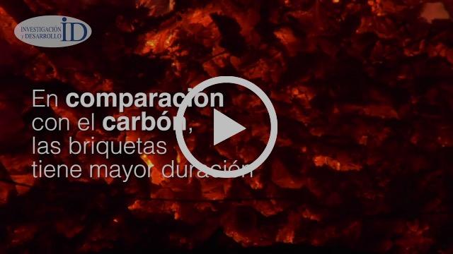 Crean jóvenes biocombustible de cáscara de almendra