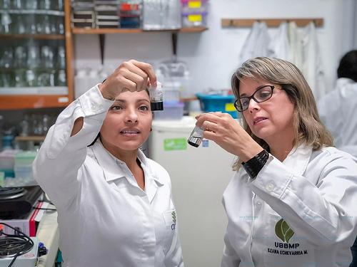 Crean científicos mexicanos nanofertilizante que potencializa la producción agrícola en más del 200 por ciento