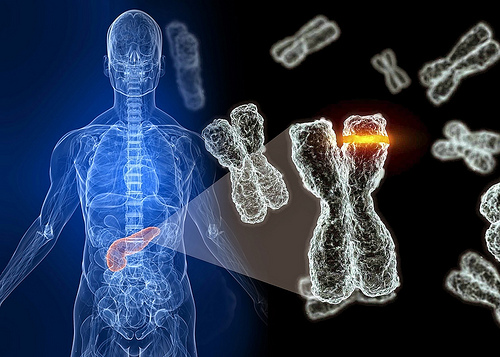 Investigación México-estadunidense identifica gen en población mexicana que posibilita desarrollo de diabetes MODY