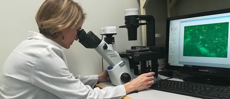 Labnalcit, un pequeño laboratorio de gran impacto científico