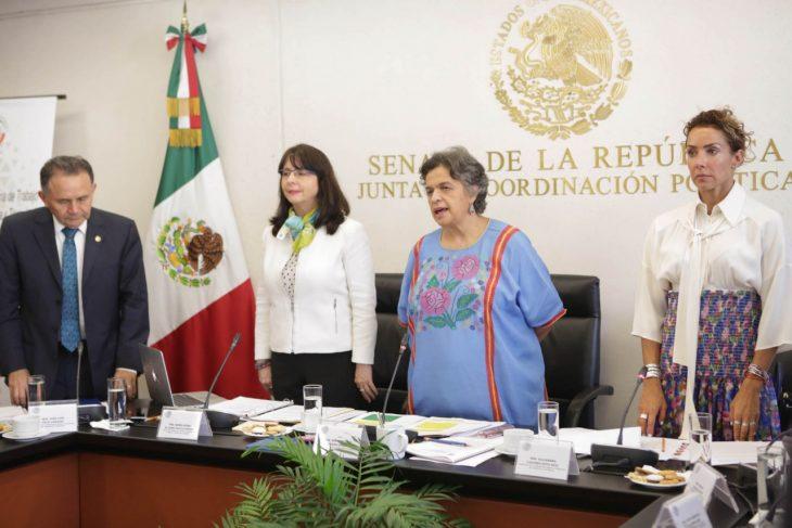 Alvarez Buylla en Senado